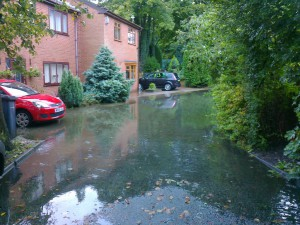 This was the scene in September 2012 in Highbanks, Lydiate