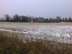 This snow covered field is where Labour councillors voted to allow a canal marina to be built off Bells Lane, Lydiate