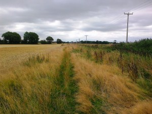rsz_lydiate_lydiate_footpath_no_08_13