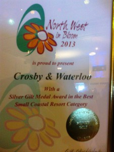 Certificate won by Crosby & Waterloo in Bloom