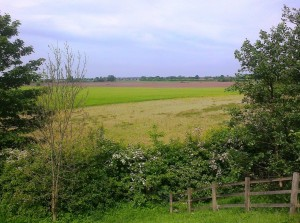 This is the huge area of agricultural land that Sefton Council intends to put under concrete to the east of Maghull.