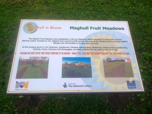 The interpretation Board at the Fruit Meadows.