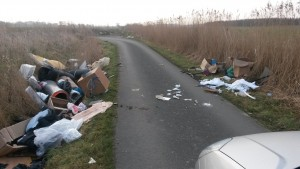 This was the sight to meet residents in Lunt Village -  this morning 20th March 2015 - Don't you wish you knew who put it here so you could chuck it in their front garden to see how they would like it!