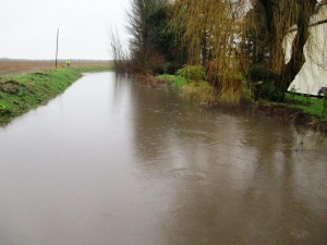 Dovers Brook in full flood looking north from Sefton Lane