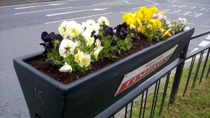 Flowering barrier planters at Maghull Square help smarten up the down at heel shopping centre.