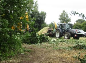 Ground and tree clearance Lydiate development site 08 16