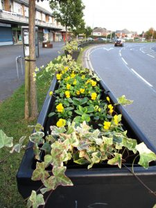 The long view of 2016 winter planting down Westway looking from the Leighton Ave junction towards the A59 Northway.