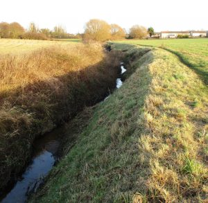 Maghull Brook - On the left Lydiate (and me) - on the right Maghull.